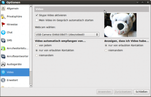 Video-Optionen mit Testbild in Skype